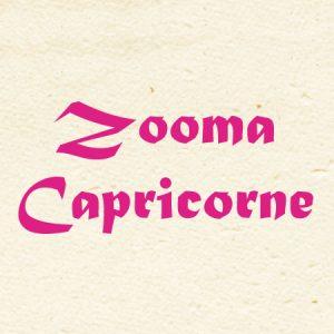 logozooma
