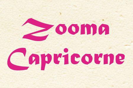Zooma Capricorne